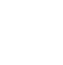 Web Conferencing Icon